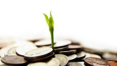 Photo of تعريف اقتصاد الريع